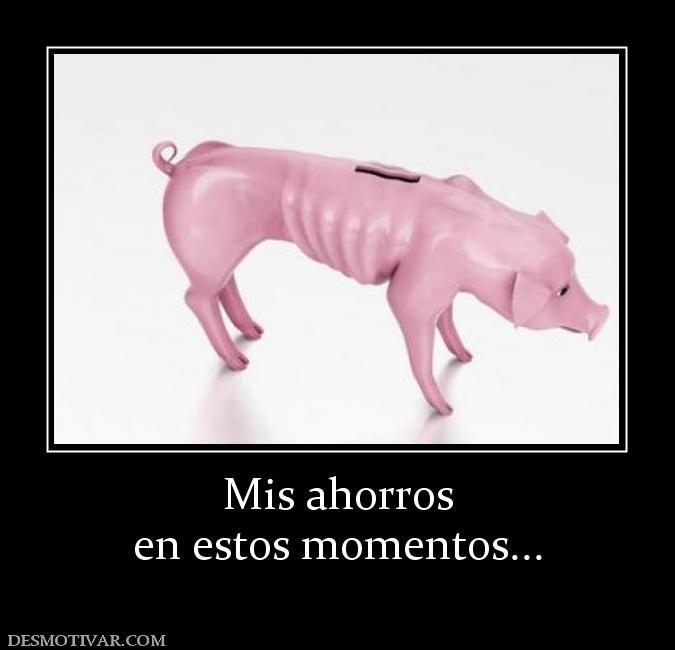 Mis+ahorros+en+estos+momentos...