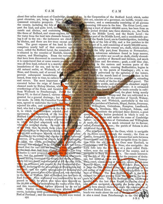Meerkat on Orange Penny Farthing Digital Print Poster Animal wall art wall decor Wall Hanging Cyclist Vintage bike