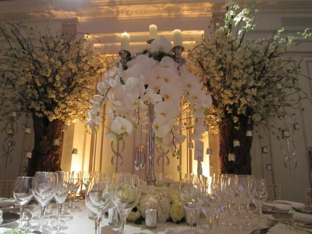 VERONA ITALY: A WEDDING IN STYLE. TAKE A LOOK AT THE COMPLETE PHOTO GALLERY. http://veronaweddingceremonyservices.com/verona-and-lake-garda-weddings.html