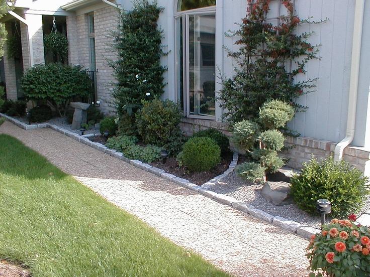 19 best evergreen shrubs images on pinterest evergreen for Low maintenance foundation shrubs