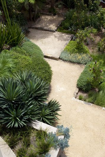 Great textures of plants with a zig zag path create interest  #garden #backyard