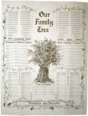 Family tree books to fill in