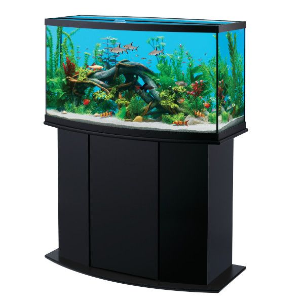 Undersea adventures are at your fingertips with national for Cheap cool fish tanks