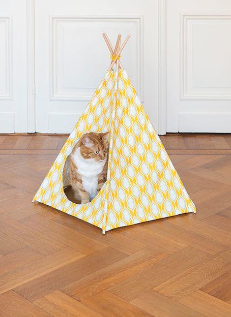 Faça você mesmo: tenda para seu gatinho