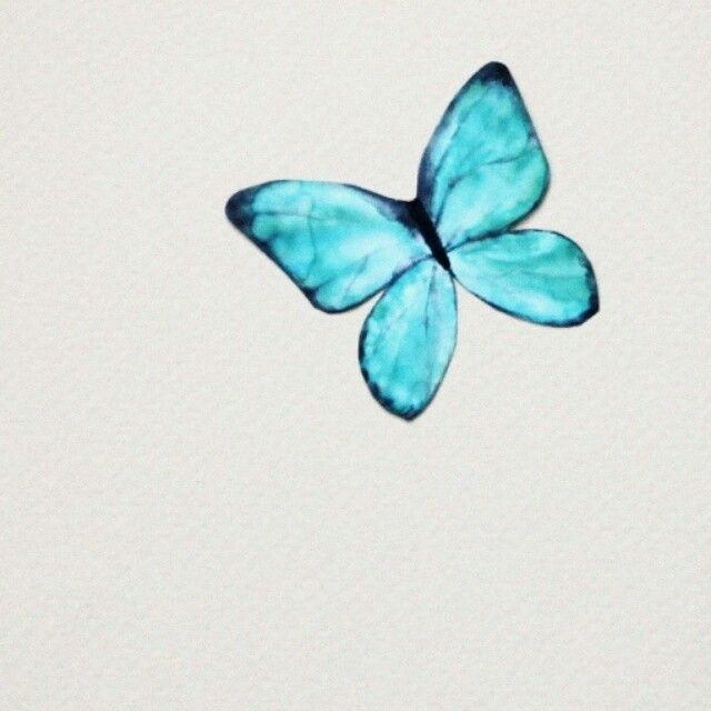 #design #painting #watercolor #butterfly #drawing #turquoise