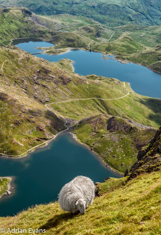 Lake Teyrn and Lake Llydaw, Mt. Snowdon, Wales