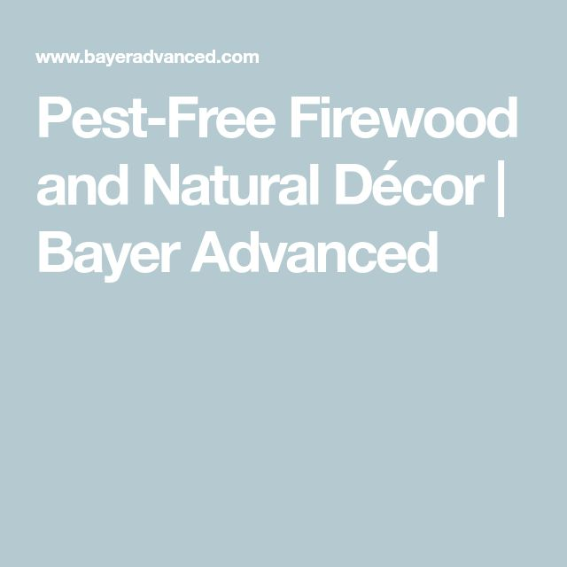 Pest-Free Firewood and Natural Décor | Bayer Advanced