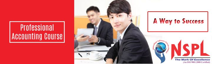 Get diploma in Professional accounting by Neurosharp