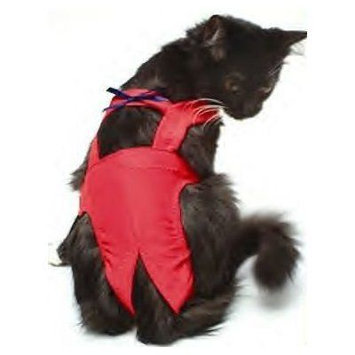 """Joybies Red Piddle Pants for X Small Cat (Measuring 11""""-13"""" Along Back from Collar to Base of Tail) Joybies http://www.amazon.com/dp/B000R9AUQI/ref=cm_sw_r_pi_dp_pT6Vvb09ZYA40"""