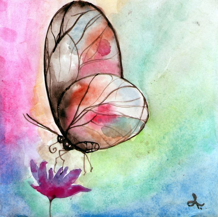 mariposa acuarela dibujo
