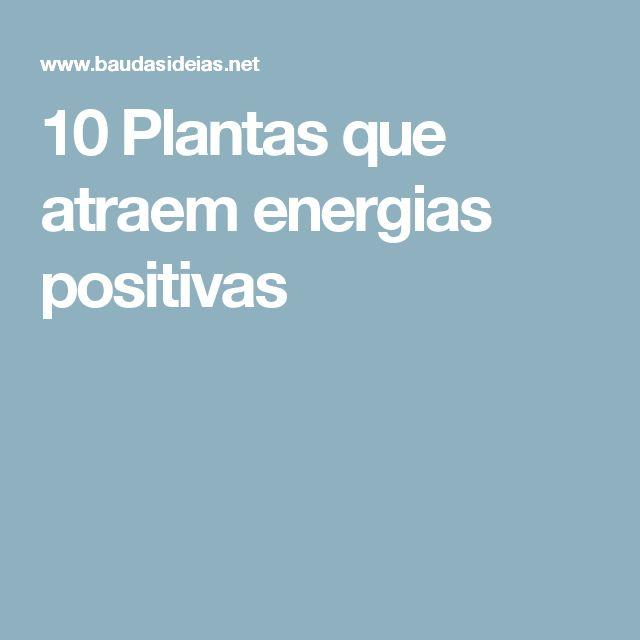 10 Plantas que atraem energias positivas