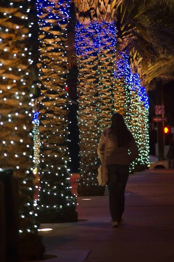 Holiday lights in full glow #FortLauderdaleBeach  #A1A  #HolidayLights