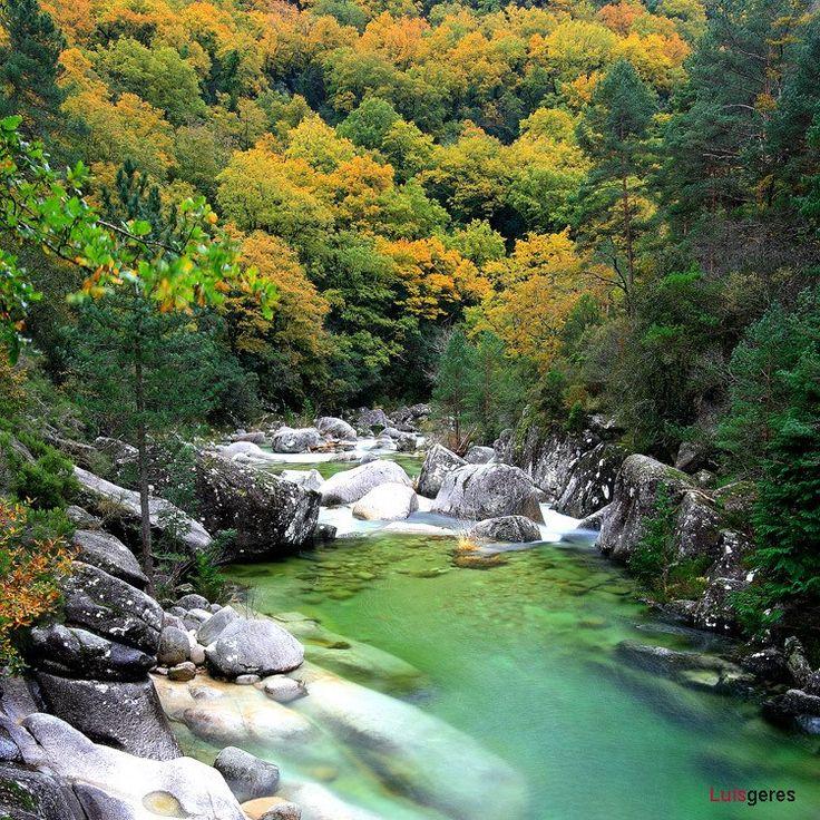 Best Portugal Images On Pinterest Landscapes Portugal And - Portugal vegetation map