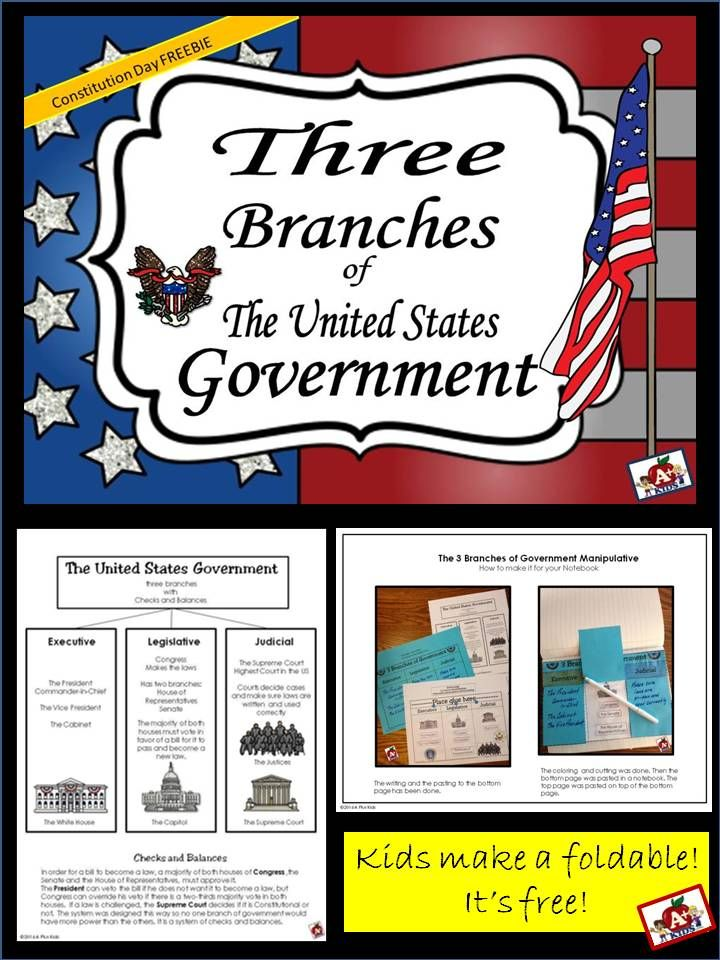 the creation of the united states constitution and the three branches of the government Home america's founding documents constitution of the united states the constitution: how did it happen america's founding documents needed to convert at least three states the constitution of the united states transcript enlarge download link.