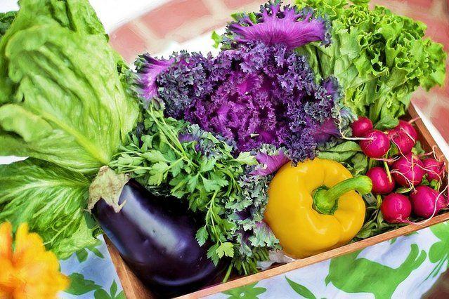 O tym, że jedzenie owoców i warzyw jest zdrowsze od jedzenia czerwonego mięsa nikogo nie trzeba przekonywać. Podstawą każdej piramidy żywieniowej są produkty roślinne. Ale to nie jest artykuł o pozytywne skutki zdrowotne przejścia na zbilansowaną dietę wegetariańską dla konkretnego człowieka. Pytanie brzmi inaczej. Jakie byłyby konsekwencje dla całej planety, gdybyśmy wszyscy zostali wegetarianami?
