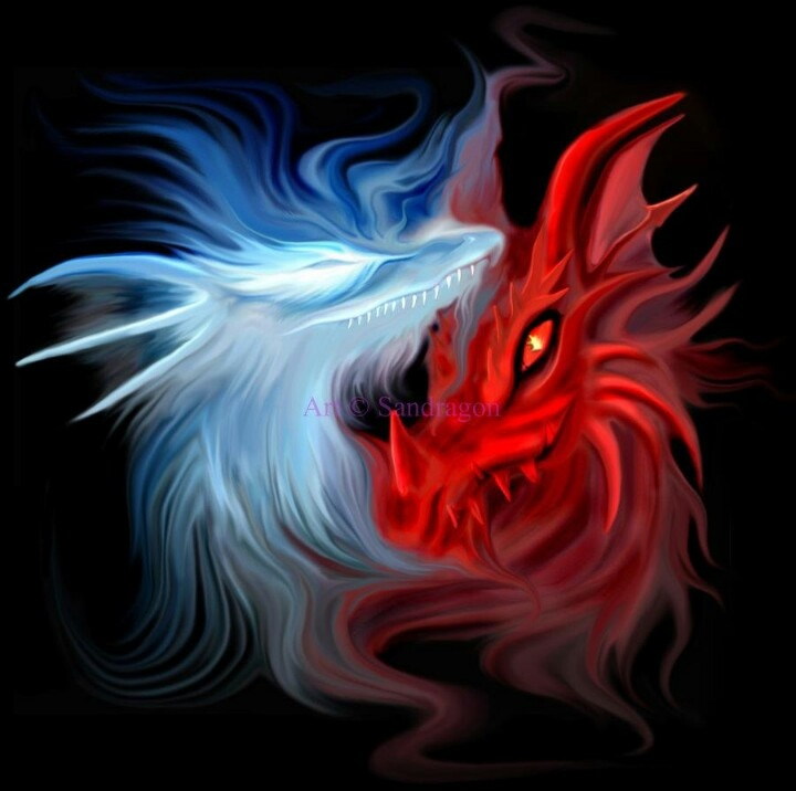 White Red Dragon Battle