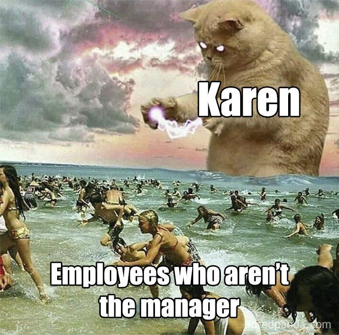 People Are Laughing At Tropical Storm Named Karen Create 21 Funny Memes Karen Memes Work Memes History Memes