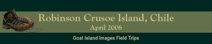 Robinson Crusoe Island 2006 Field Trip Photos on Goat Island Images