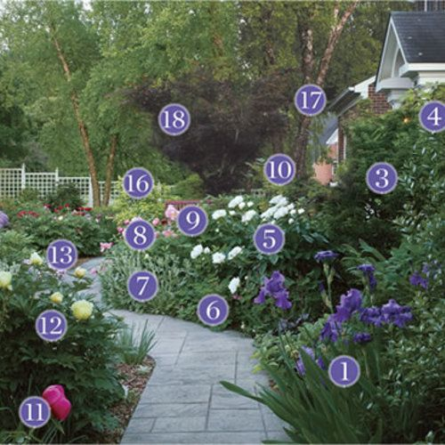 Plants for an Inviting Front-Yard Pathway: Plant Identification - FineGardening - Gorgeous garden path garden design with plant identification. #gardenpaths