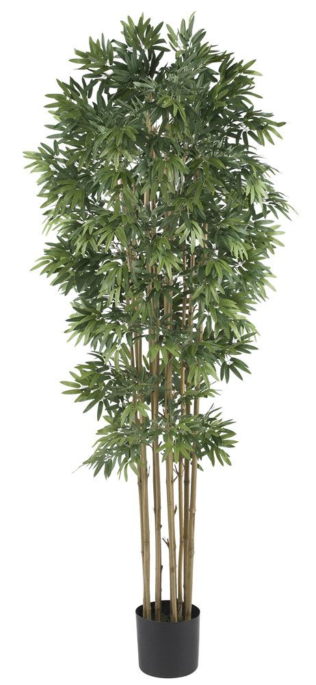 Features:  -Tree material: Silk.  -Touch of Asian decor.  -Green color.  Product Type: -Tree.  Plant Type: -Bamboo.  Orientation: -Floor.  Plant Material: -Other/Silk.  Base Included: -Yes.  Plant Col