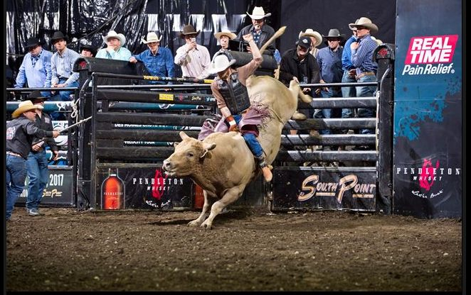 Bucking Bulls in VR: You can live-stream a Professional Bull Riders competition this weekend on Ultracast