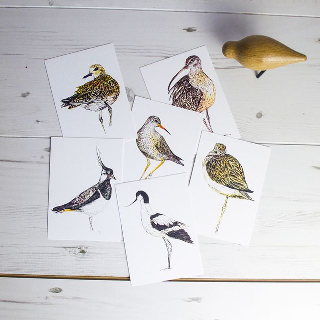 Unusual  Best Images About Birds Animals And Insects On Pinterest  With Fair Boxedset Of Six Waders And Shorebirds Illustrated Postcards With Delectable Robinson Garden Also Game Of Thrones Garden In Addition Snowshill Manor And Garden And Victorian Gardens As Well As Garden Centres Macclesfield Additionally Almondsbury Garden Centre Bristol From Pinterestcom With   Fair  Best Images About Birds Animals And Insects On Pinterest  With Delectable Boxedset Of Six Waders And Shorebirds Illustrated Postcards And Unusual Robinson Garden Also Game Of Thrones Garden In Addition Snowshill Manor And Garden From Pinterestcom