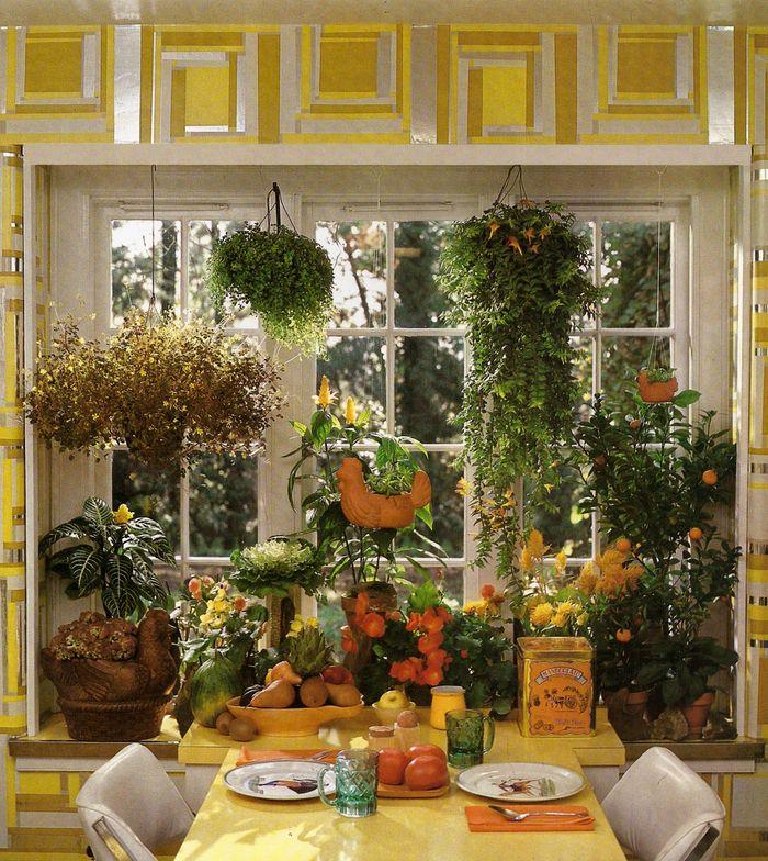 indoor gardens apartment design 104 best |Dining Room Plants| images on Pinterest | Indoor