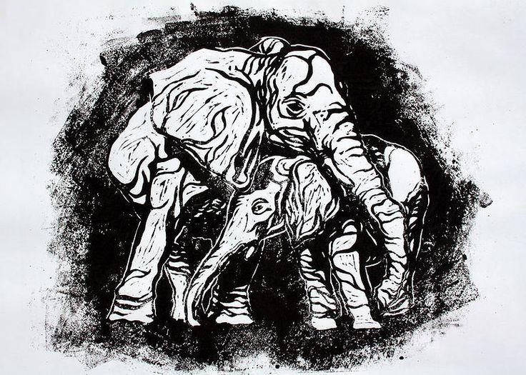 Matthew Ziranek, Illustration