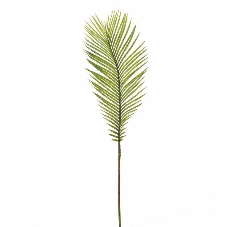 Feuille de palmier Cycas Petit Modèle - SIA