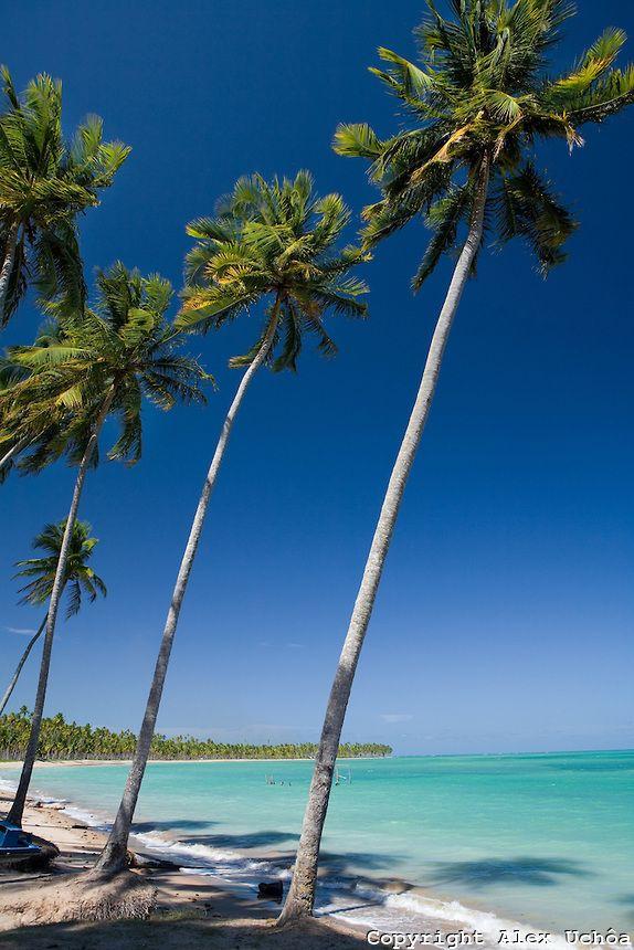 Praia das Lages, localizada no município de São Miguel dos Milagres, Costa dos Corais, Alagoas...Lages  Beach,  Sao Miguel dos Milagres, Ala...