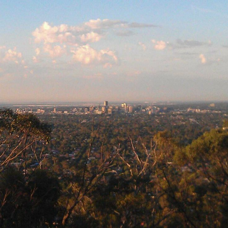 The view tonight from Windy Point Lookout, #Belair. #australia #southaustralia #adelaide #gadelaide