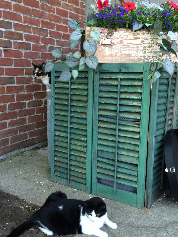 Ways to hide propane tanks shabby shutters hiding the for Ways to hide air conditioning units