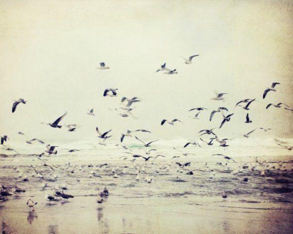 A River of Birds - 8x10 fine art print by Lupen Grainne