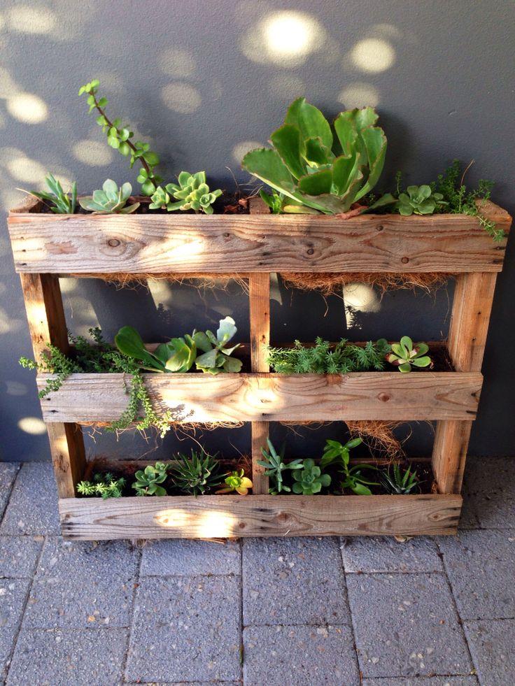 11 best succulent containers images on pinterest for Pallet succulent garden
