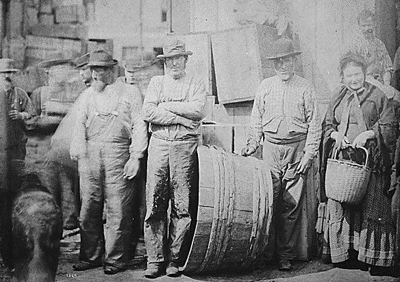 Irish clam diggers pose on a wharf in Boston, 1882 (100 years before I was born!)