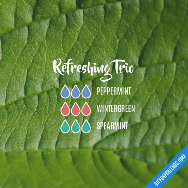 Refreshing Trio - Essential Oil Diffuser Blend