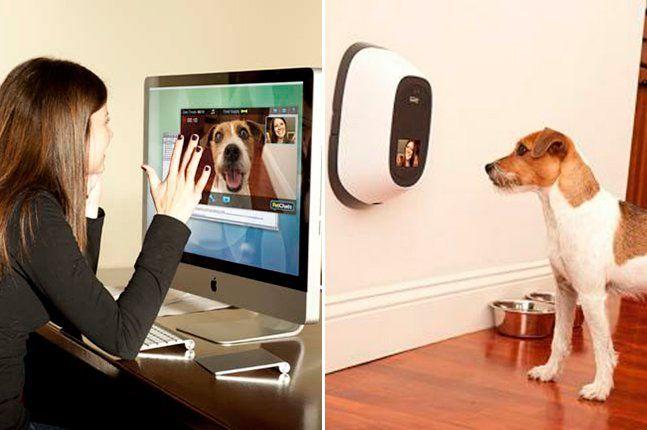 Agora você pode matar saudades do seu animalzinho a qualquer hora. Um sistema de comunicação inovador projetado para cães, gatos e pessoas permite que você comunique-se com seu bichinho de estimação de qualquer lugar do mundo. Intitulado PetChatz, o sistema de vídeo e telefone é equipado com microfone, uma tela pequena, câmera, sensor de som e movimento e alto falante. Ainda é possível mimar o bichano, apertar um botão e dar presenteá-lo com um biscoitinho. Para comunicar-se, basta apertar…