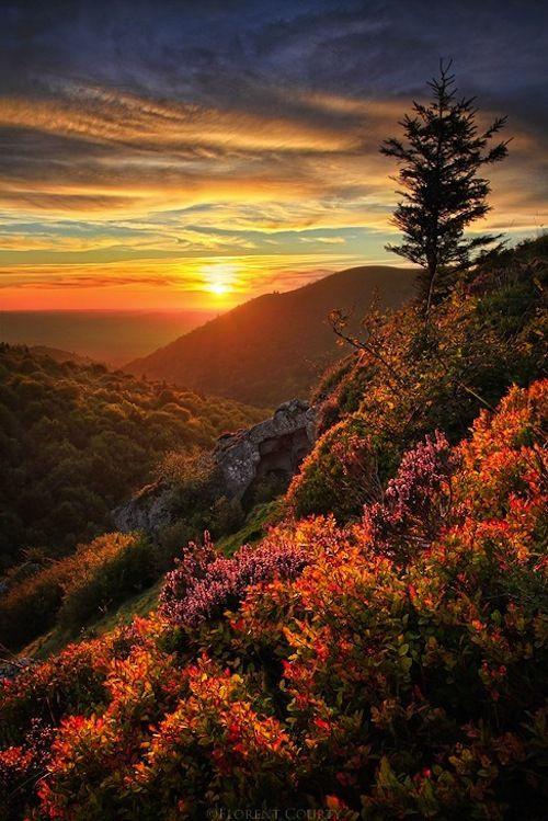 bluepueblo: Mountain Sunset, Chaîne des Puys, France photo via finally