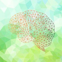 Brain Polygonal vector vector art illustration