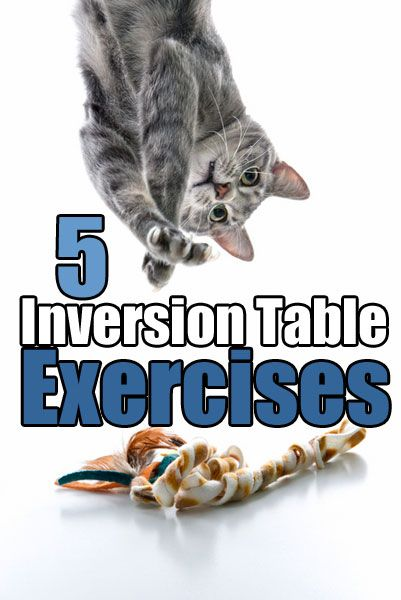 5 Inversion Table Exercises for stretching back, spine, ab workouts, upside down crunches. What works, how to get better results, how to make it easier but just as effective
