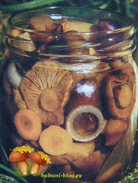Grzyby marynowane Marynaty grzybowe różnią się między sobą dodatkami, jakich używamy do przyrządzenia zalewy. Najczęściej do marynowania różnych grzybów używa się zalewy w proporcji: na 1 kilo grzybów – szklanka octu, szklanka wody, łyżka soli, łyżka cukru, 5-6 ziaren ziela angielskiego, 10-12 ziarenek pieprzu, 3 listki laurowe.