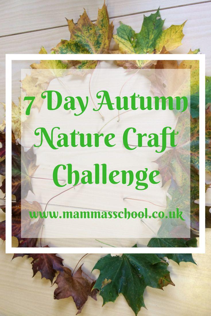 Autumn Nature Craft challenge, autumn craft, nature craft, craft challenge, autumn challenge www.mammassschool.co.uk