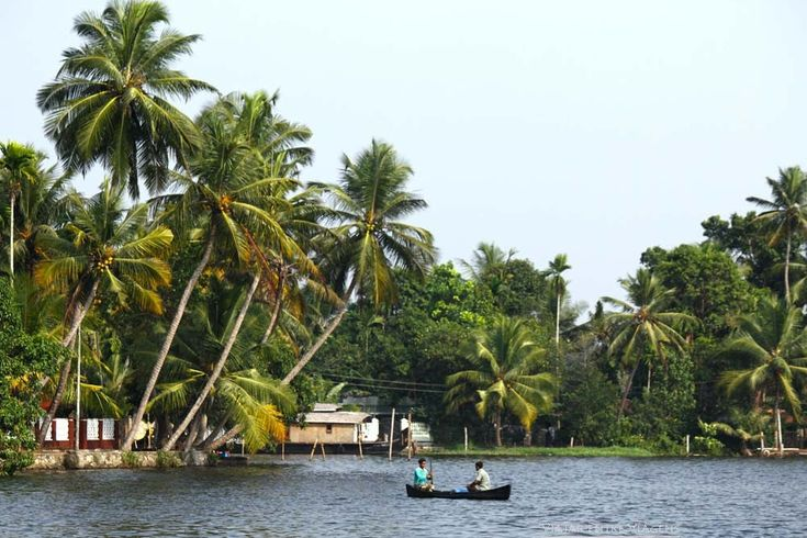 backwaters india kerala
