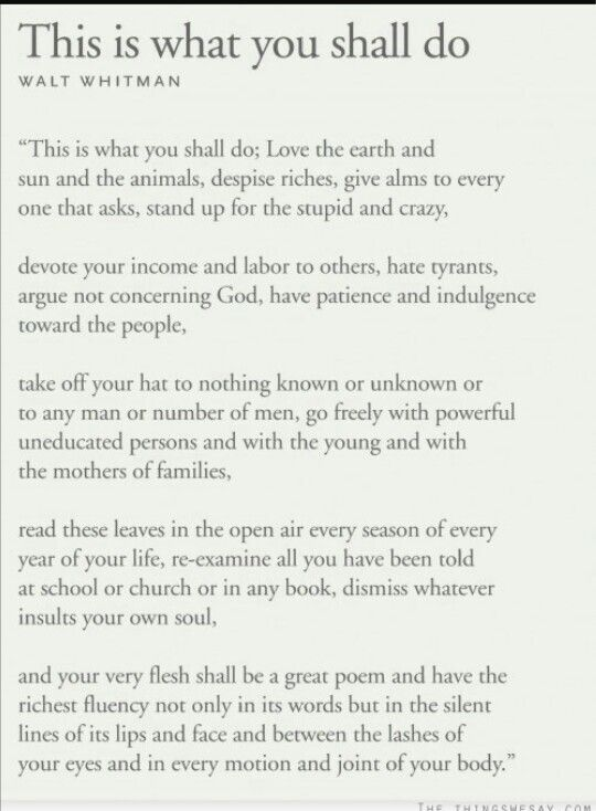Preface of Leaves of Grass
