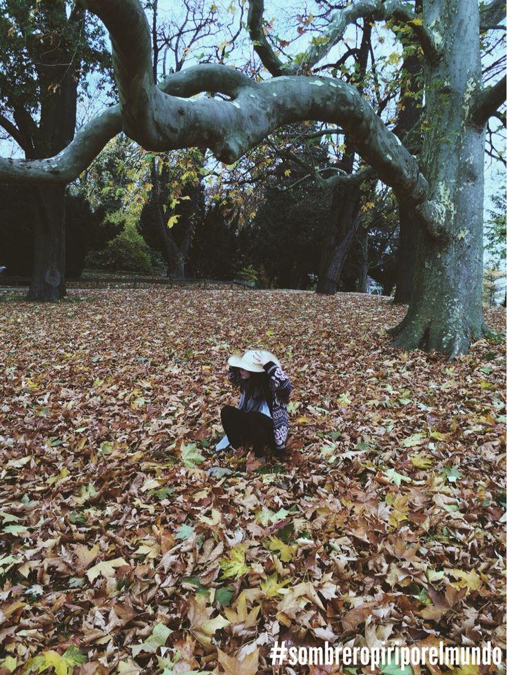 Sombrero por el otoño
