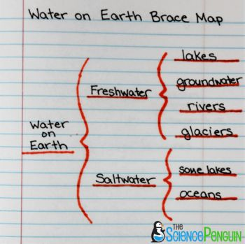 Using Thinking Maps in Science: Brace Map
