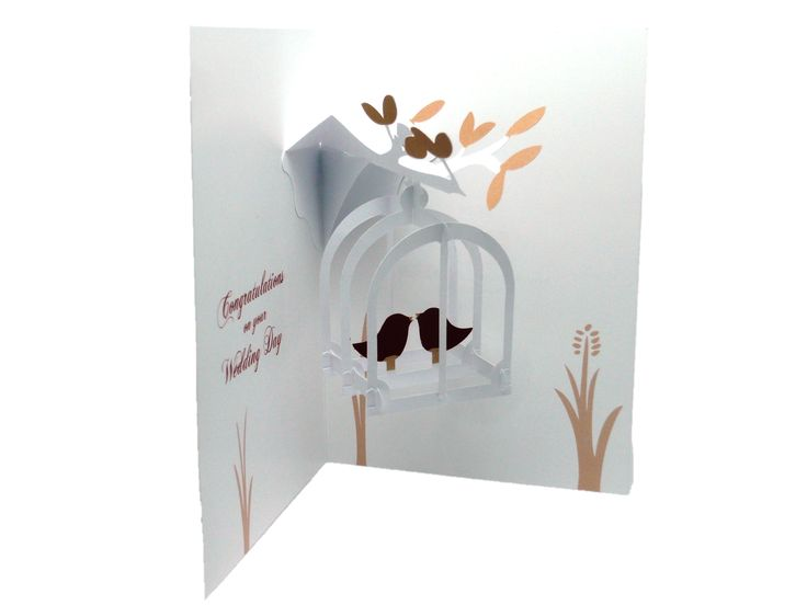 Wedding congratulations card with swinging birdcage.