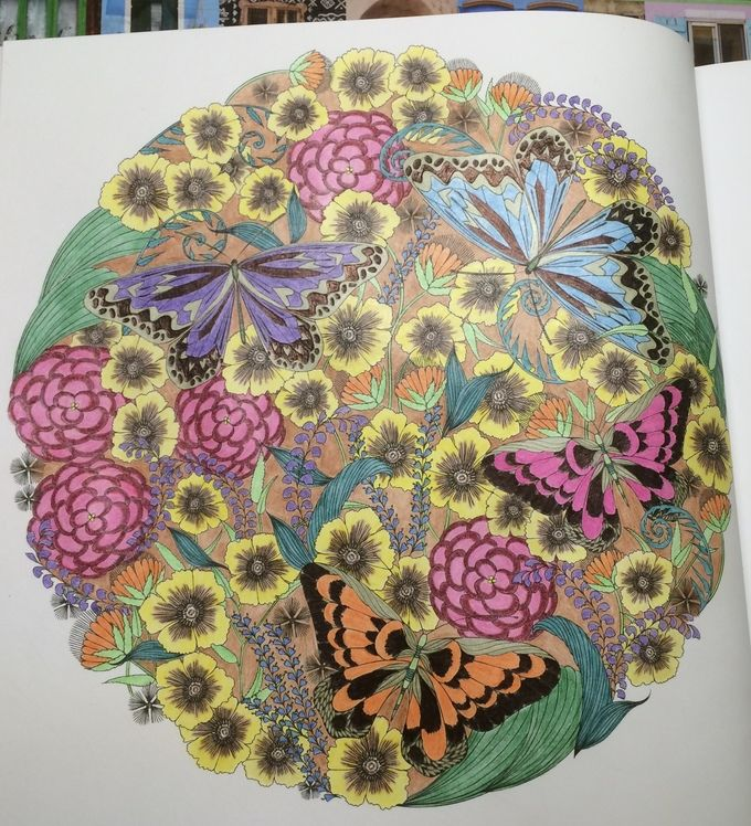 Butterflies From Millie Marottas Animal Kingdom Adult ColoringColouringColoring BooksBook