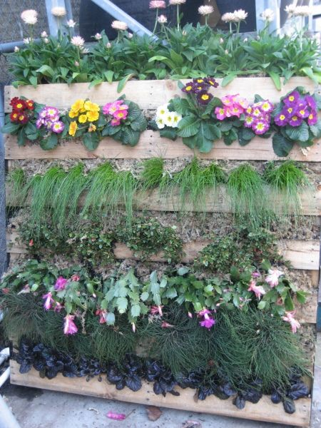25 best images about pallet garden ideas on pinterest for Flower beds out of pallets