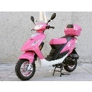 50cc Moped Sunny Gas Motor Scooters with FREE Trunk and Windshield, Moped ScooterDepot.Us